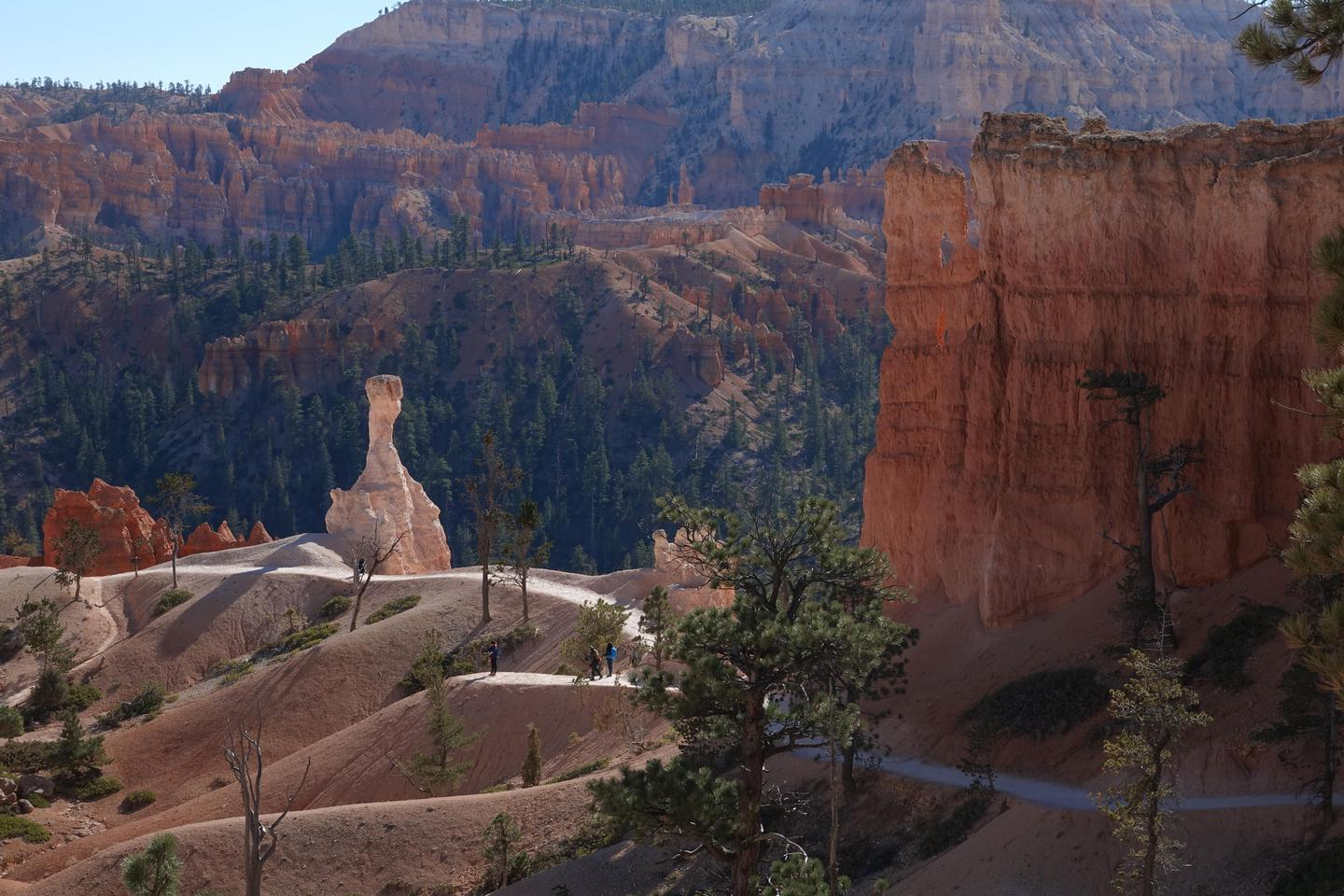 Queen's Garden TrailMore strenuous trails below the rim provide up-close views of the hoodoo rock spires, while easier walks along the rim give perspective from above.