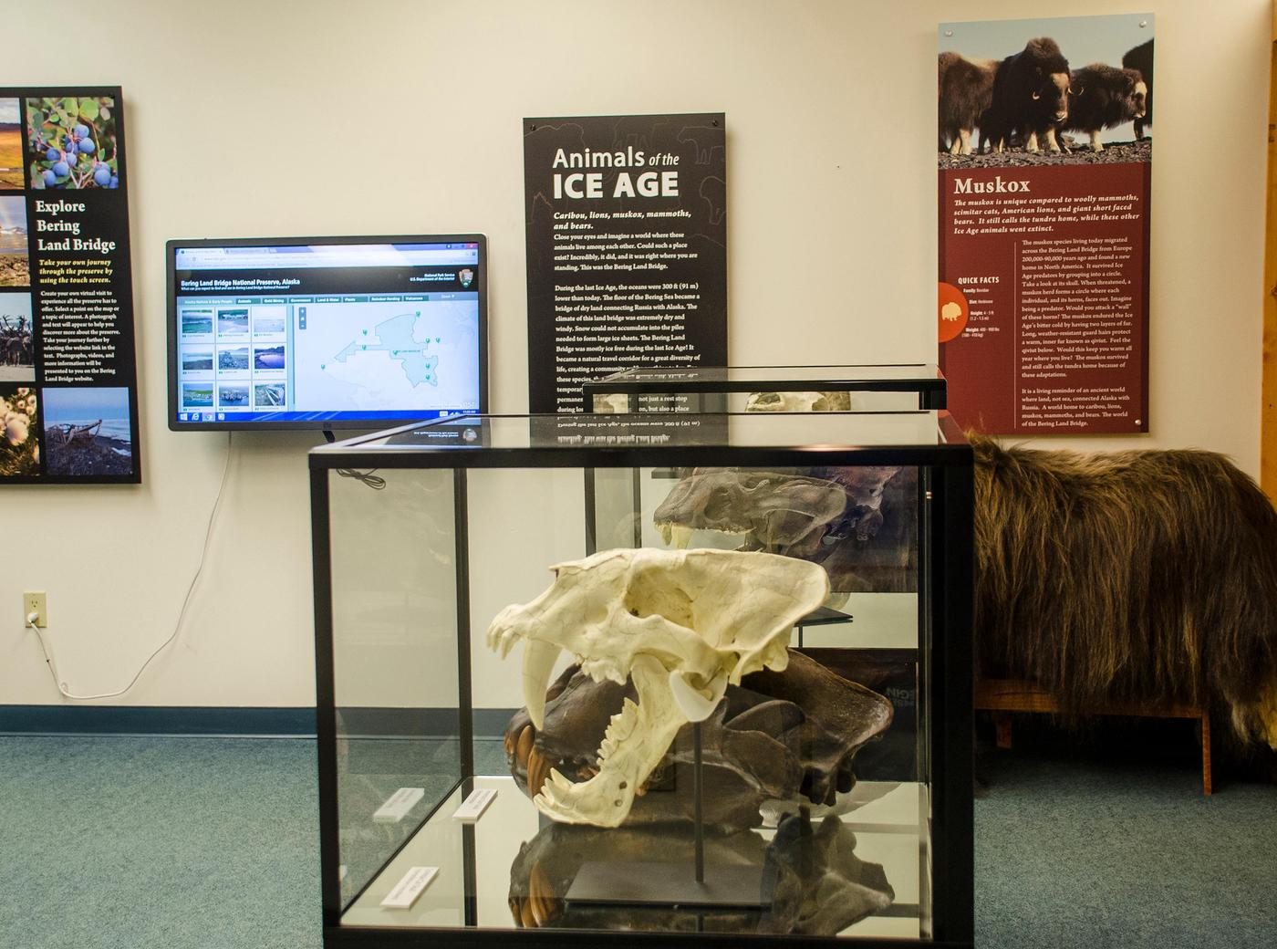 Touch screen monitor and Ice Age Exhibit Panels