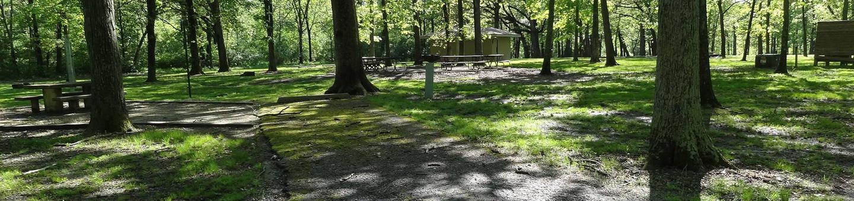 Shagbark Group Area
