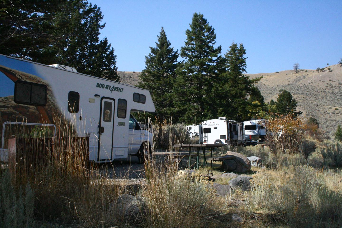 Mammoth Hot Springs Campground Site 37..Mammoth Campsite #37