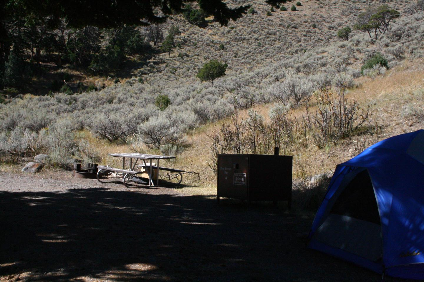 Mammoth Hot Springs Campground Site 48Mammoth Campsite #48