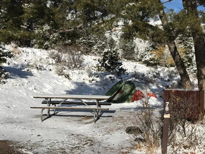 Mammoth Hot Springs Campground Site 78Mammoth Campsite #78 during a fall snow storm