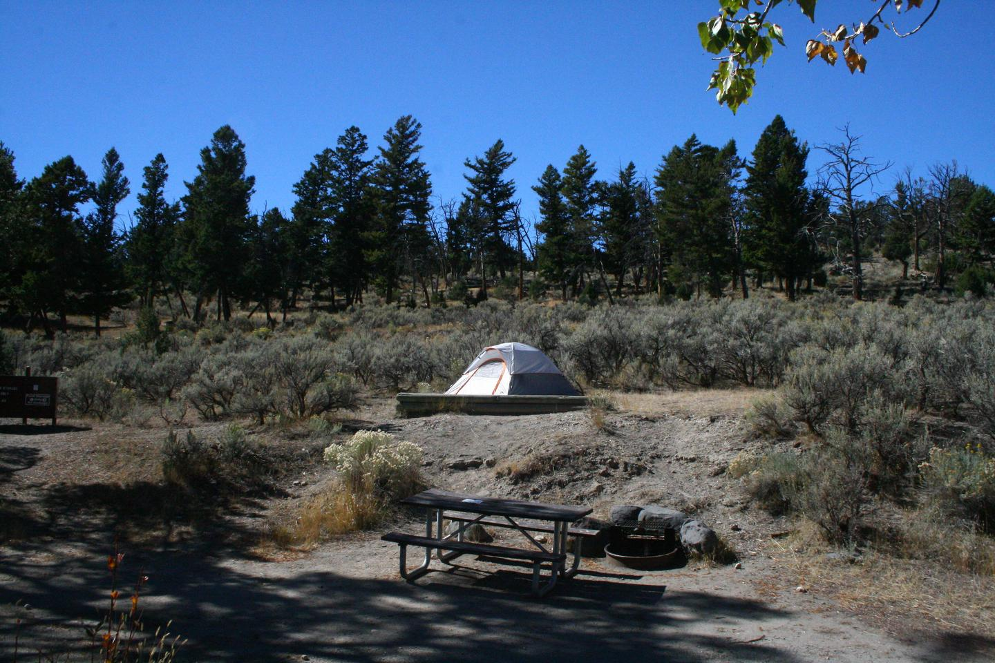Mammoth Hot Springs Campground Site 82.Mammoth Campsite #82