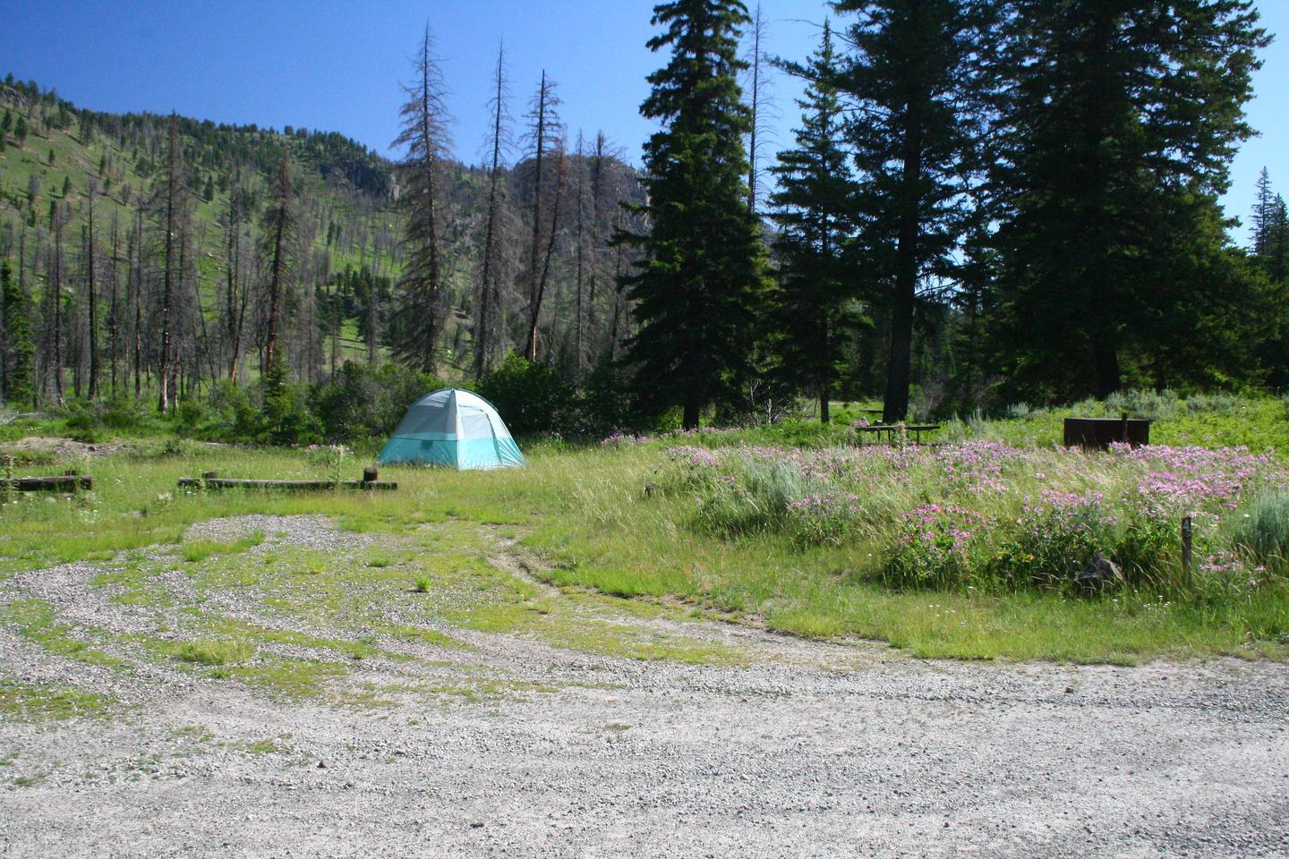 Slough Creek Campground Site #4.Slough Creek Campground Site #4