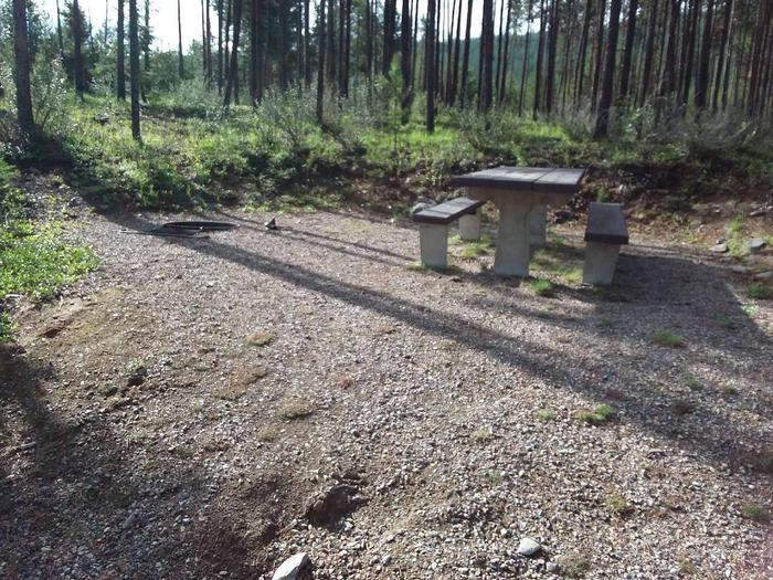 McGregor Lake Site 11-table