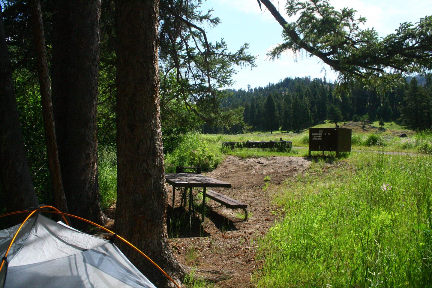 Slough Creek Campground Site #9..bSlough Creek Campground Site #9