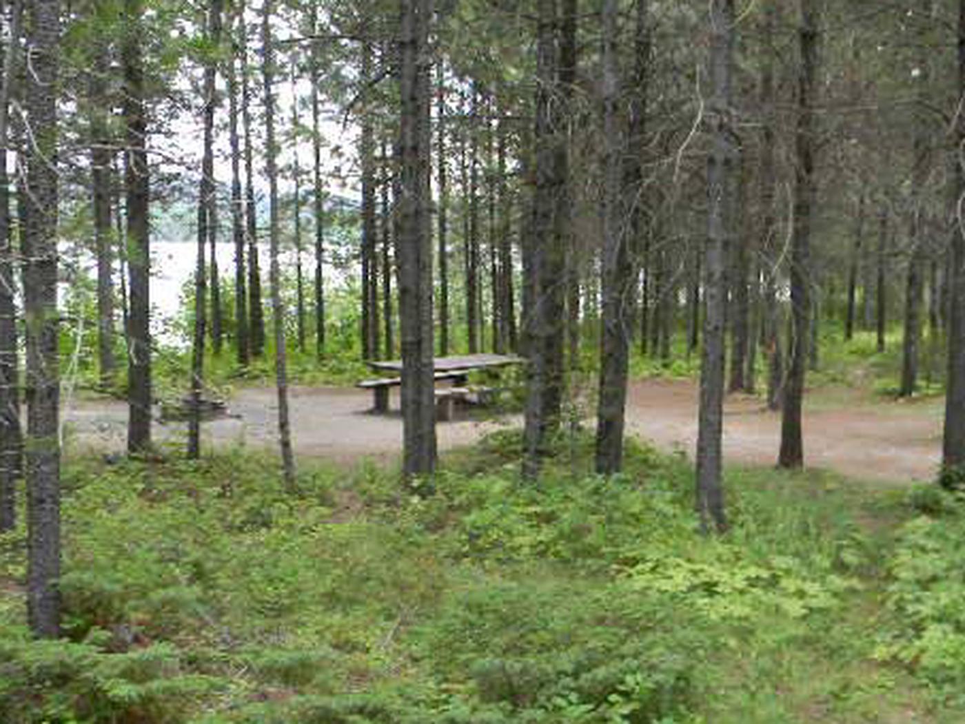McGregor Lake Tent Site 3