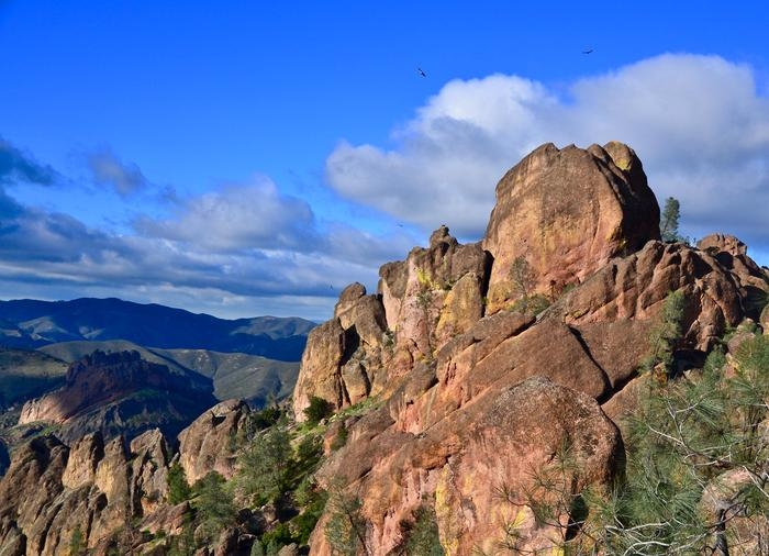 High Peaks with Condors AboveThe best views of Pinnacles' rocks can be enjoyed from the west side with almost no effort required.