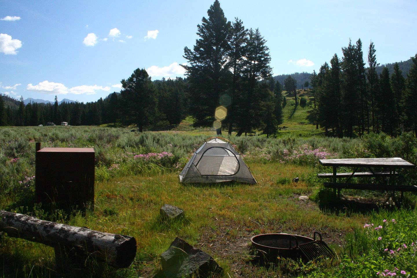 Slough Creek Campground Site #15