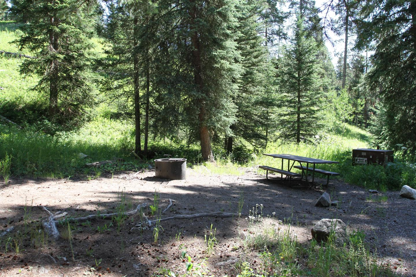 Pebble Creek Campground Site #9Pebble Creek Campground's only accessible Site #9