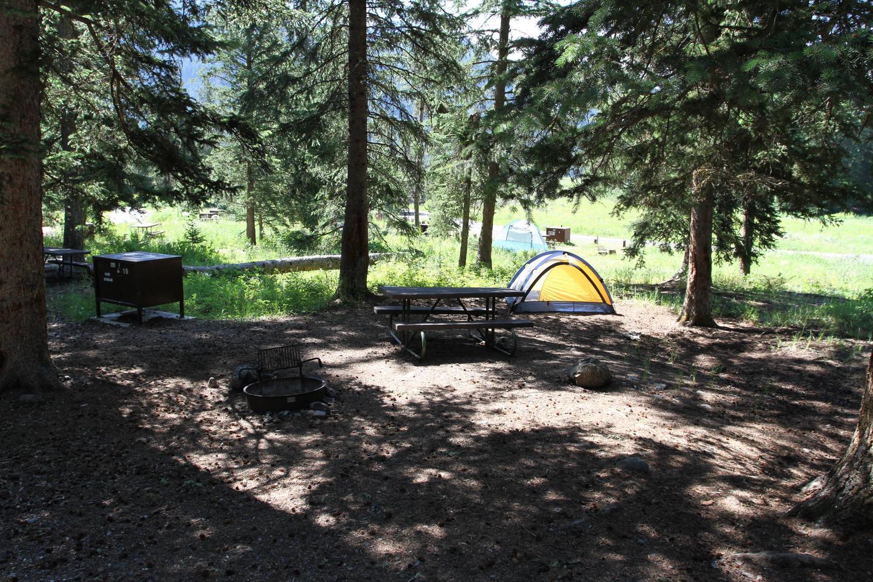 Pebble Creek Campground Site #10