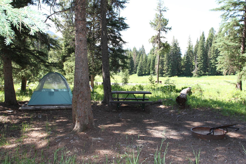 Pebble Creek Campground Site #11.Pebble Creek Campground Site #11