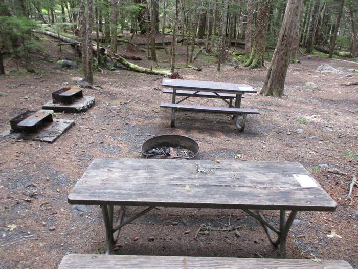 Fire Pits and Picnic Tables