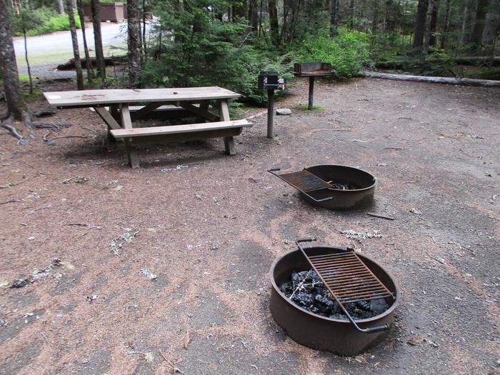Picnic Table and Fire Pits