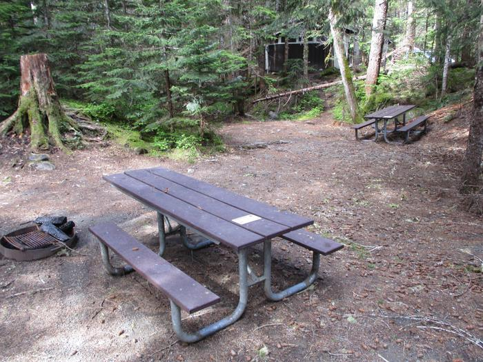 Picnic Tables and fire ring