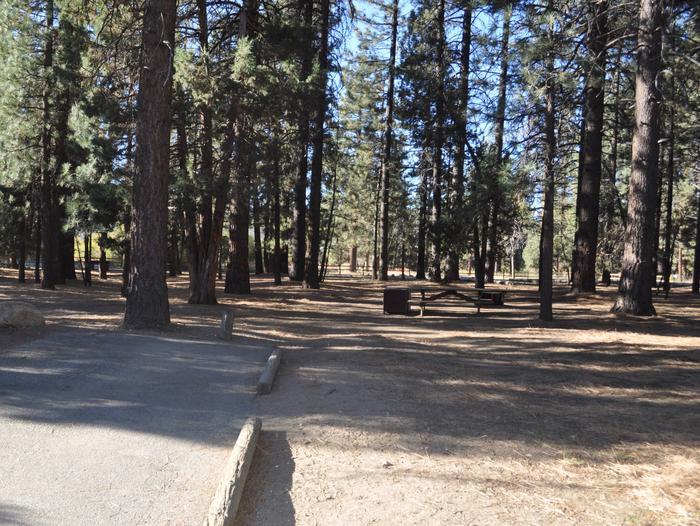 site 117Near the peddle path