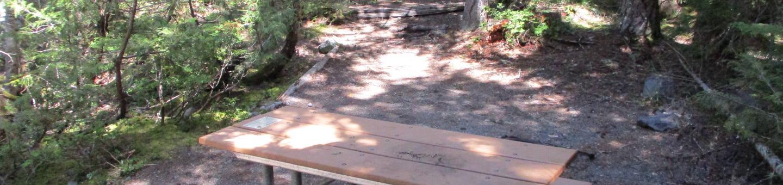 Shaded Picnic Table