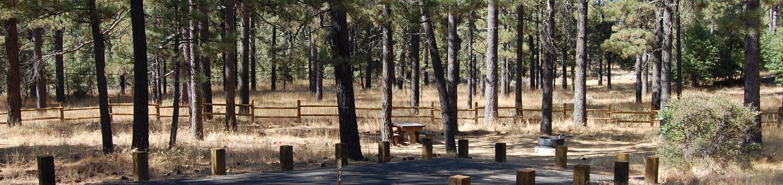 Campsite #2 Laguna Mountain Campground