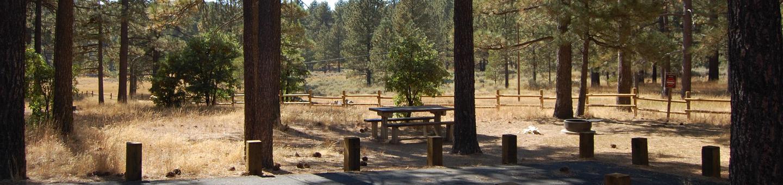 Campsite #4 Laguna Mountain Campground