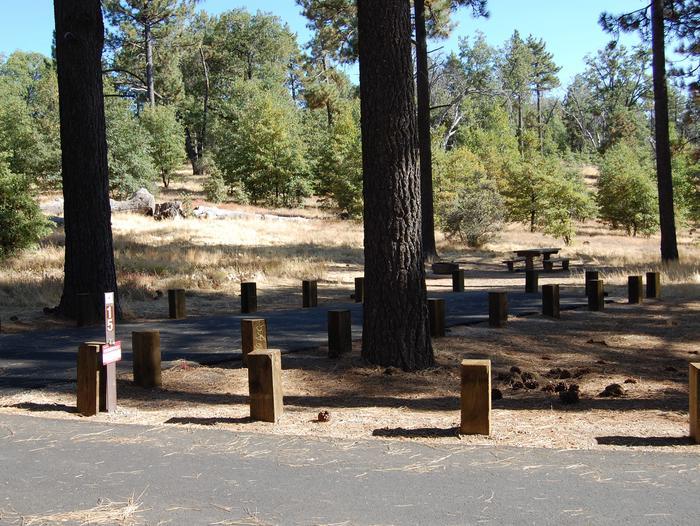 Campsite #15 Laguna Mountain Campground