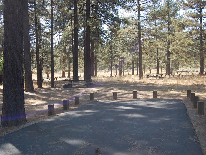 Campsite #16 Laguna Mountain Campground