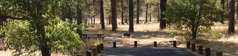 Campsite #18 Laguna Mountain Campground