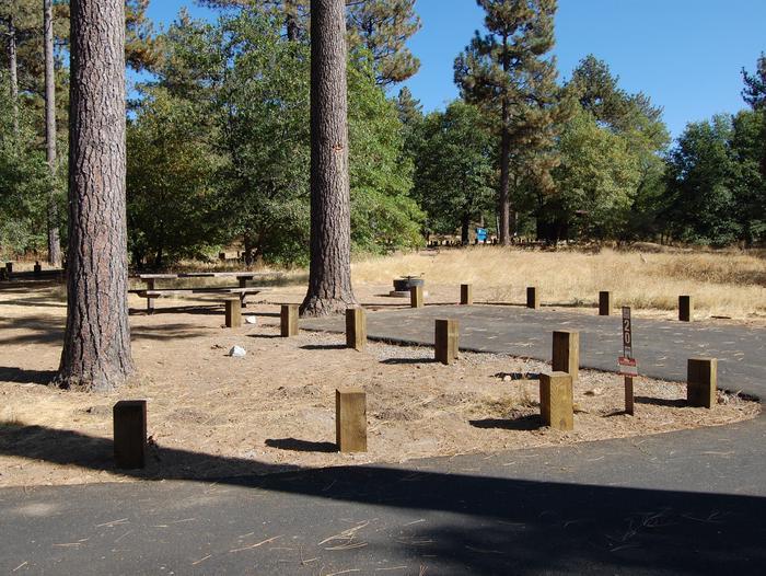 Campsite #20 Laguna Mountain Campground