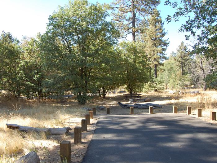 Campsite #21 Laguna Mountain Campground