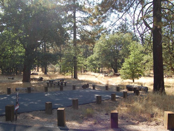 Campsite #25 Laguna Mountain Campground