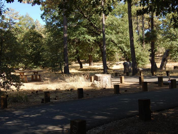 Campsite #29 Laguna Mountain Campground