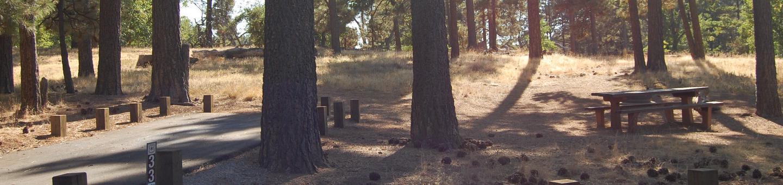 Campsite #33 Laguna Mountain Campground