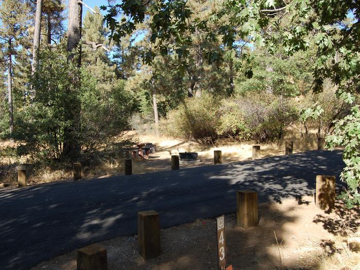 Campsite #43 Laguna Mountain Campground