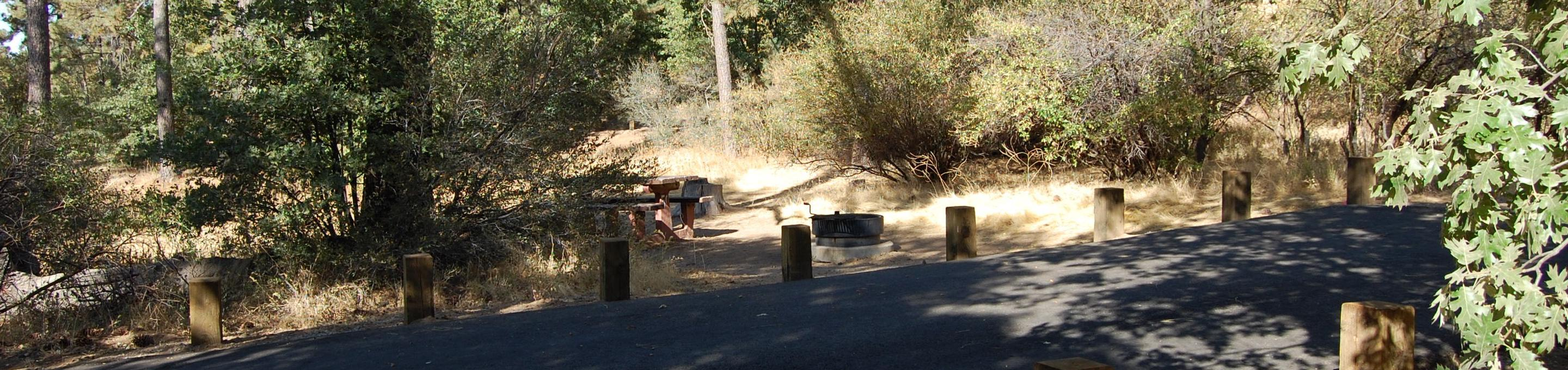 Campsite #43 Laguna Mountain Campground
