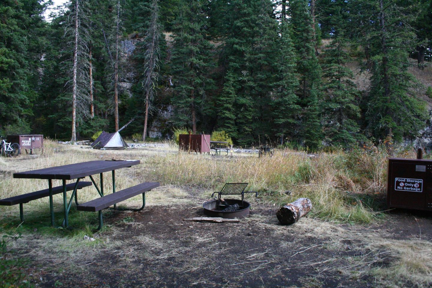 Pebble Creek Campground Site #22.Pebble Creek Campground Site #22 - walk-in site