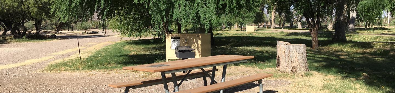 Site 22Cottonwood Campsite #22