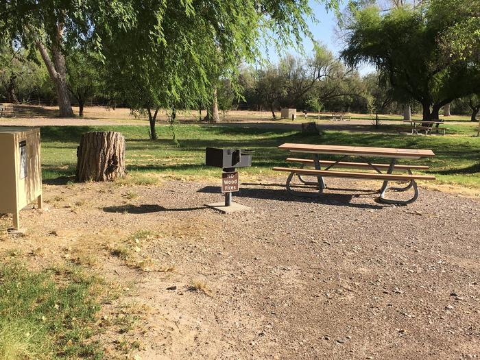 Cottonwood Campsite #22