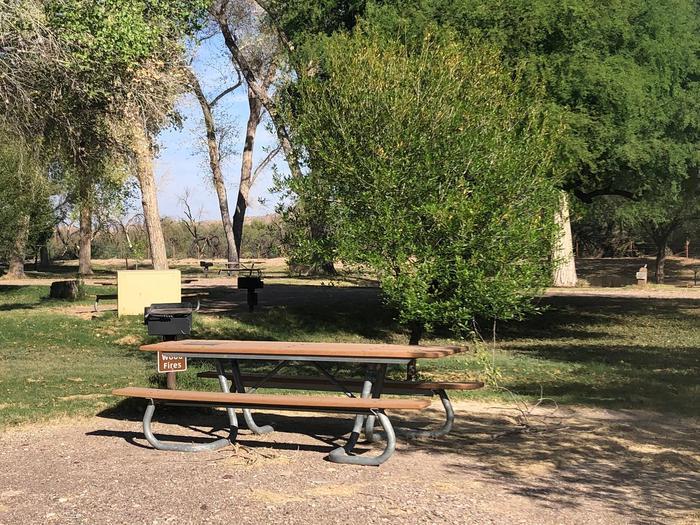 Cottonwood Campsite #21