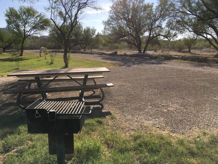 Cottonwood Site #20