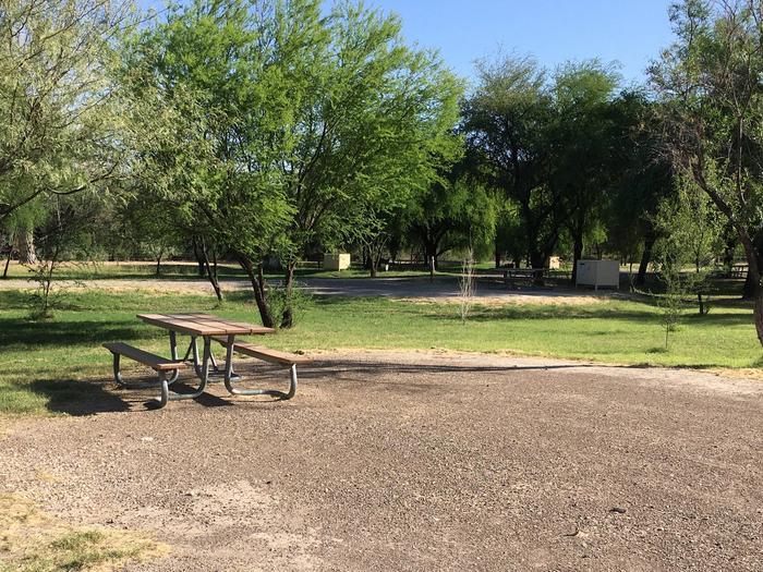 Cottonwood Campsite #20