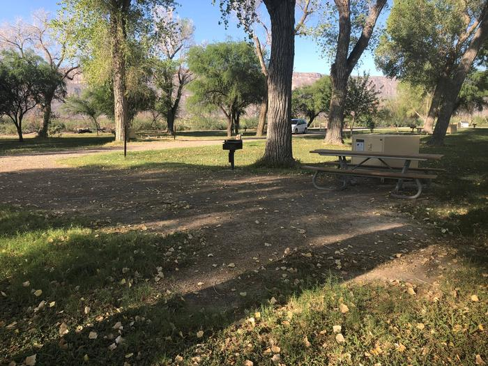 Partially shaded site in the afternoonSite has a bear box, raised grill, and picnic table.