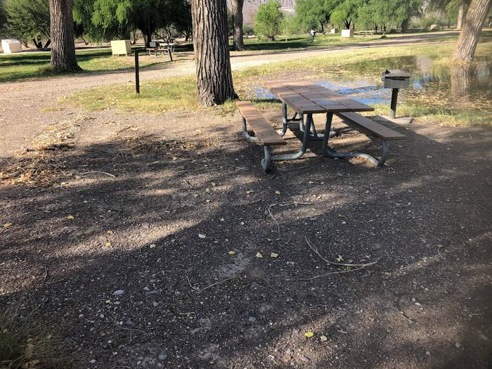 Flat, gravel site with picnic table, raised grillBear box also in site, not pictured.