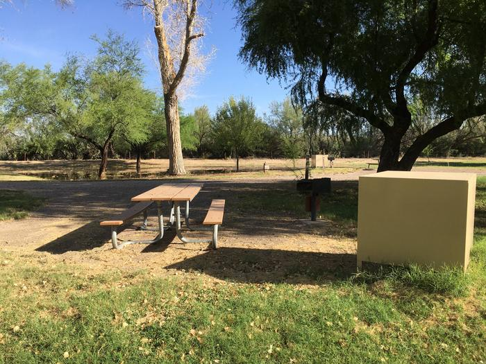 Partial shade covers this site, with bear box, picnic table, and raised grill