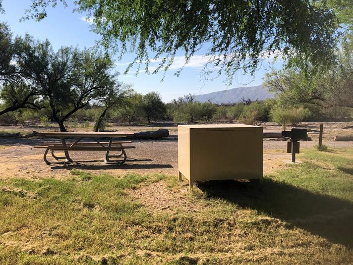 Cottonwood Campground Site #19