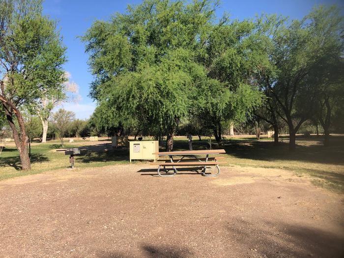 Cottonwood Site #19