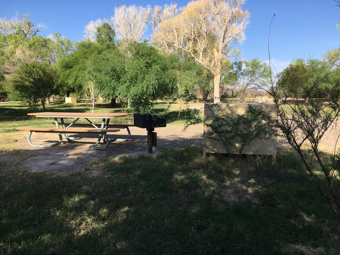 This site sits among the Cottonwood trees