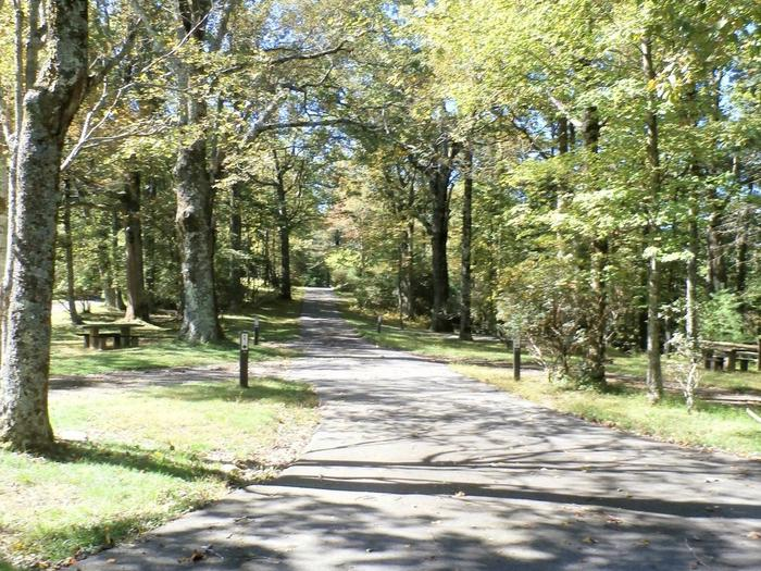 Preview photo of Doughton Park Campground