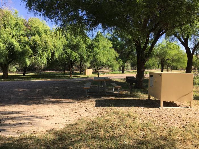 Cottonwood Campground Site #16