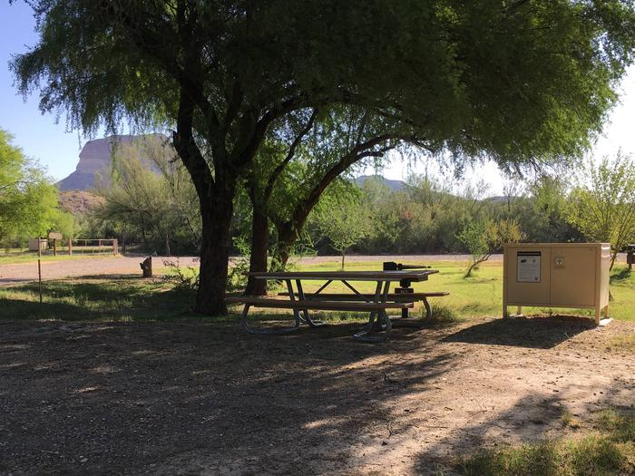 Cottonwood Campground Site #18