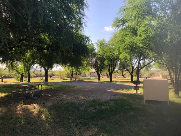 Cottonwood Campground Site #15