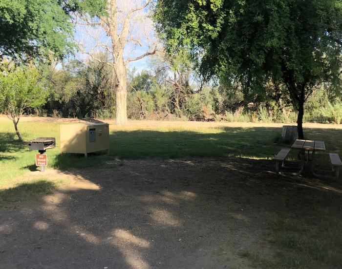 Site #15 Cottonwood
